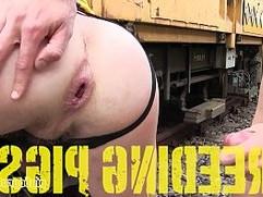 PIGBOY PRESENTS BREEDING PIGS